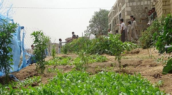 Záhrada im dáva obživu aj nádej