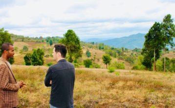 Nové stromy v Etiópii